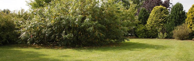 bio-gärtnerei-gartenanlagen-plain