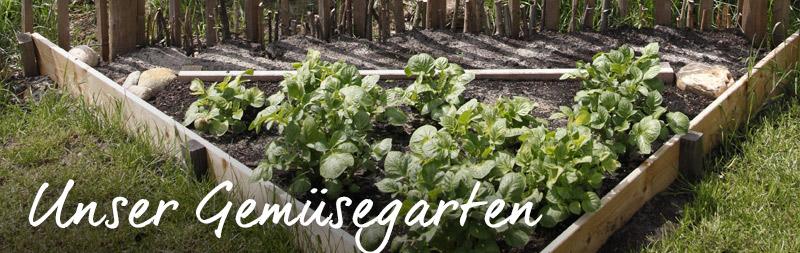 bio-gärtnerei-gemüsegarten