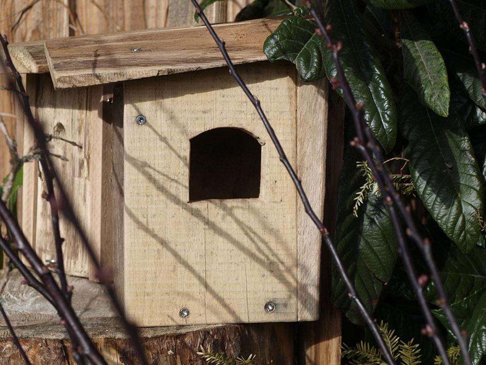 Vogelhaus selbstgemacht 1